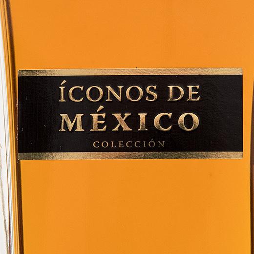 Iconos De Mexico