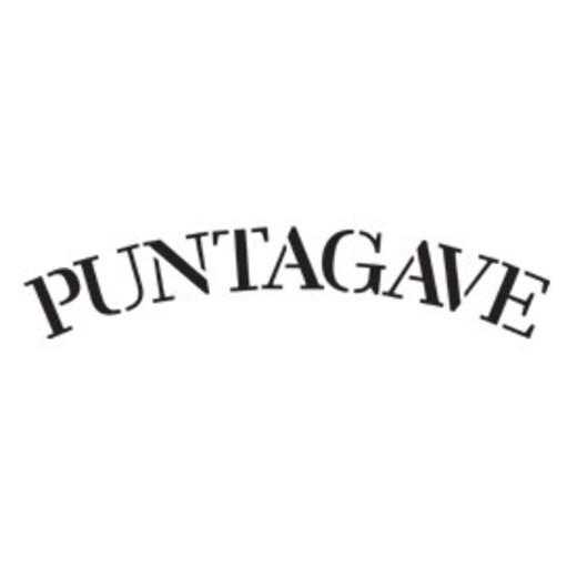 Puntagave