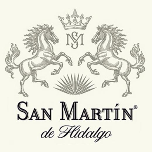 San Martín de Hidalgo